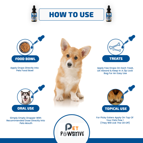 Pet Pawsitive Debuts CBD Oil for Dogs'