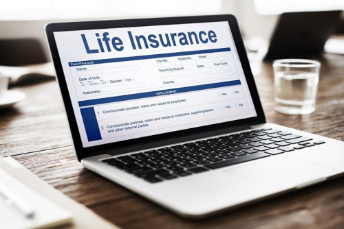 Global Online Life Insurance Market Size, Status And Forecas'