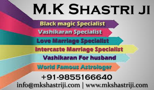 Company Logo For Pandit MK Shastri Ji'