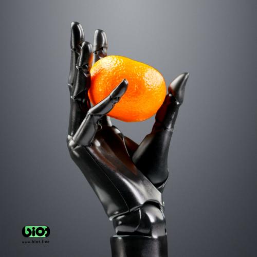 Robotic hand BIOT holding'