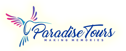 Company Logo For Paradise Tours'
