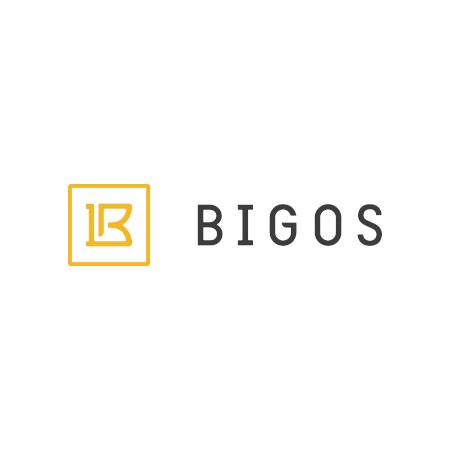 Company Logo For Bigos Management, Inc.'