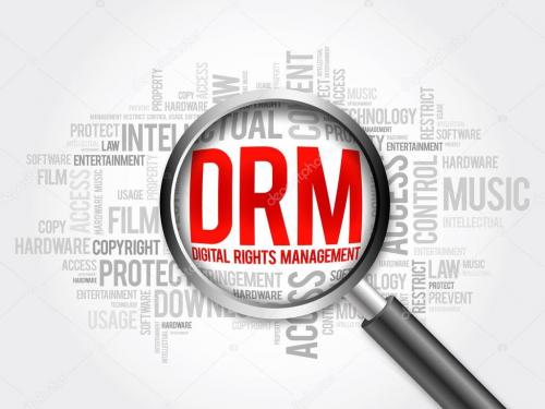 Digital Rights Management market'