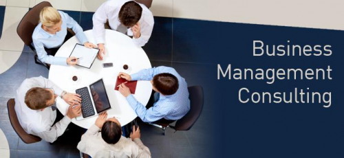 Business Management Consulting Services Market'