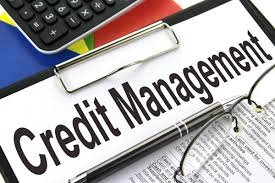 Credit and Collections Software'
