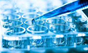 Global Research Antibodies Market'