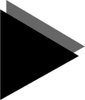 Company Logo For Black Turtle Diginovation Pvt Ltd'