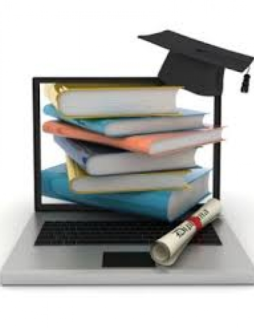 Online Higher Education Market'