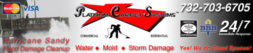 Platinum Carpet Systems & Restoration'