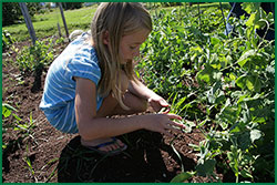 Bentley Seeds Launches New Giving Page'