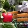 Harvesting Robot Market'