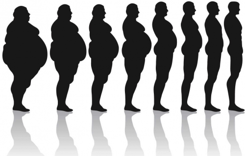 How Long Does it Take to Lose Weight'