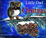 Little Owl at Christmas'