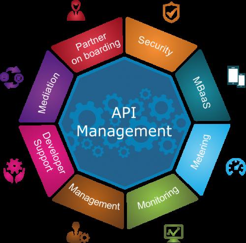 API Management market'