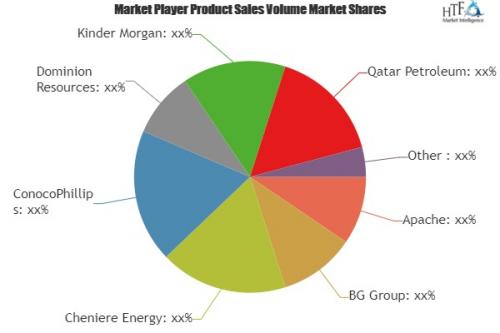 Liquefied Natural Gas Market'