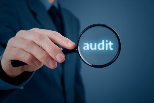 Risk Based Internal Audit Service Market'