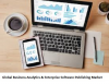 Business Analytics & Enterprise Software Publishing'