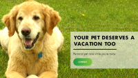 Your Pet Deserves A Vacation Too