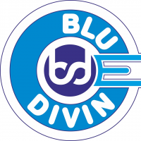 Blue Divine Event Management Agency Logo