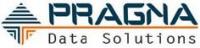 Pragna Data Solutions Logo