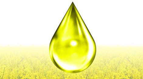 Bioethanol Market'