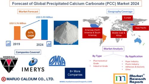 Forecast of Global Precipitated Calcium Carbonate (PCC)'