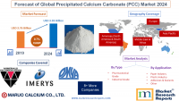 Forecast of Global Precipitated Calcium Carbonate (PCC)