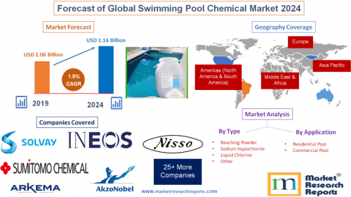 Forecast of Global Swimming Pool Chemical Market 2024'
