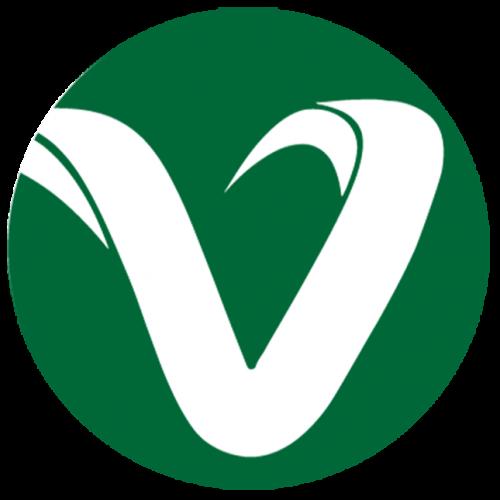 Company Logo For Viacon Marketing And Technologies Pvt.Ltd'