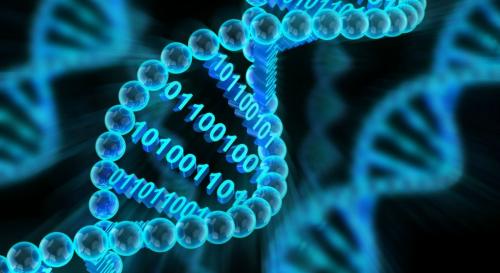 Bioinformatics Market'