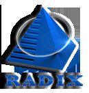 Logo for Radixweb'
