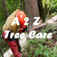A to Z Tree Care Logo