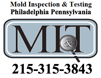 Mold Inspection and Testing'