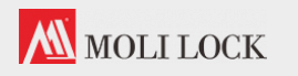 Company Logo For Moli Lock'
