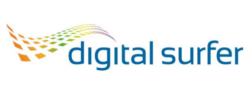 Company Logo For Digital Surfer'