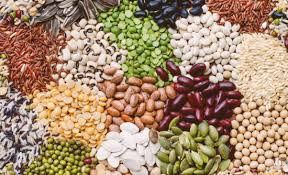 Seed Market'