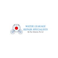 Flux Water Leakage Repair Logo