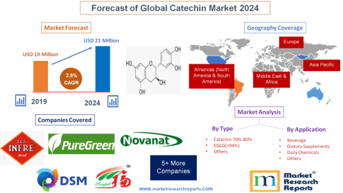 Forecast of Global Catechin Market 2024'