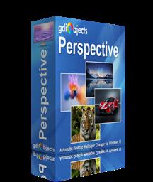 Perspective - Box Shot'