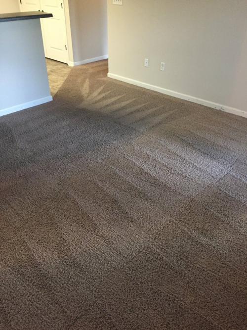 Floor Cleaning'