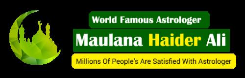 Company Logo For no1muslimastrologer.com'