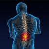 Everwell Chiropractic