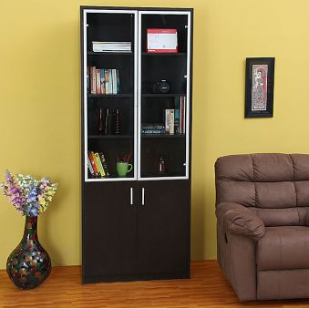 Two Door Bookcase'