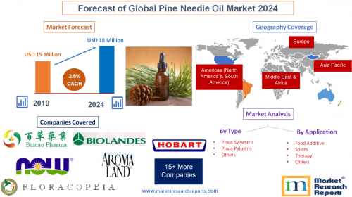 Forecast of Global Pine Needle Oil Market 2024'