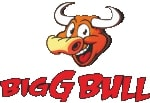 Company Logo For Biggbull Industries Limited'