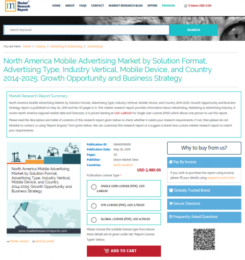 North America Mobile Advertising Market by Solution Format'