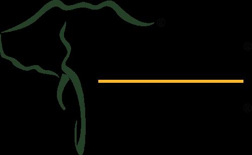 Company Logo For Tembua Inc.'