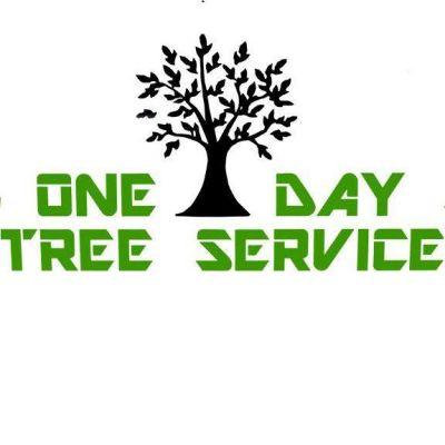 Company Logo For One Day Tree Service'