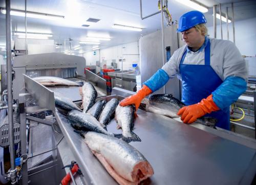 Seafood Safety Testing Market'