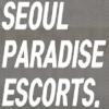 Seoul Paradise Escort